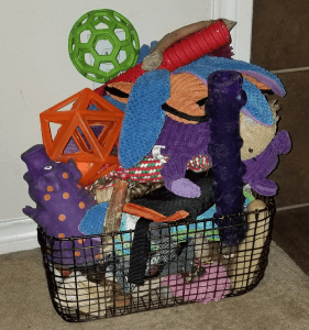 Basket of Dog Toys