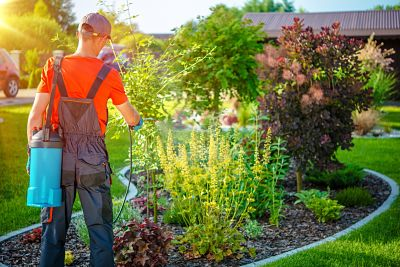 Professionally sprayed pesticides as well as over the counter pesticides can be dangerous to your indoor and outdoor pets.