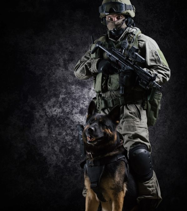Happy K-9 Veteran's Day