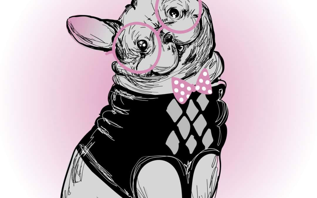 Trendy Frenchie