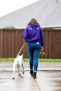 Fur Services Fur Pets Savannah Dog Walker