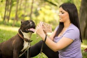 Woman putting muzzle on dog